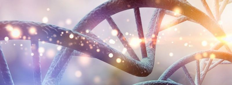 Nucleic acid solutions from sampling to DNA/RNA